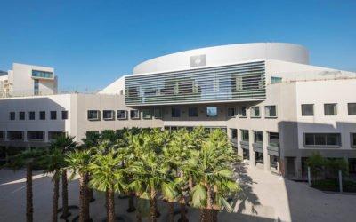 New York University, Abu Dhabi Campus